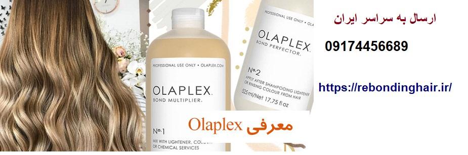اولاپکس اورجینال